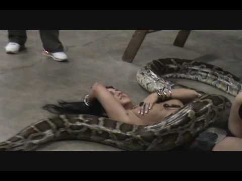 Exotic Glamour Shoot With Flora  20 Foot Snake